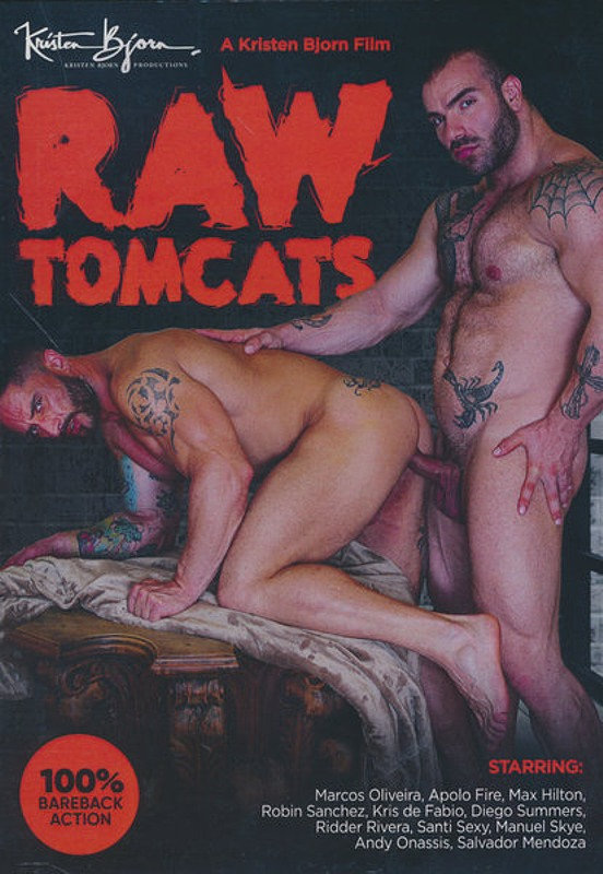 Raw Tomcats Gay DVD Bild