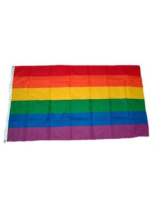 Gay Pride Rainbow Flag 90 x 150 cm Gay Buch / Magazin Bild