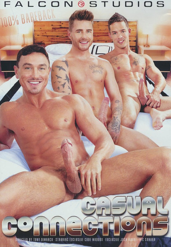 Casual Connections Gay DVD Bild